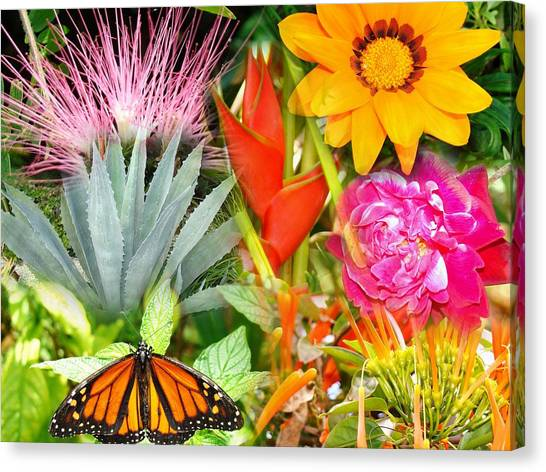 Butterfly In The Flowers Canvas Print by Van Ness