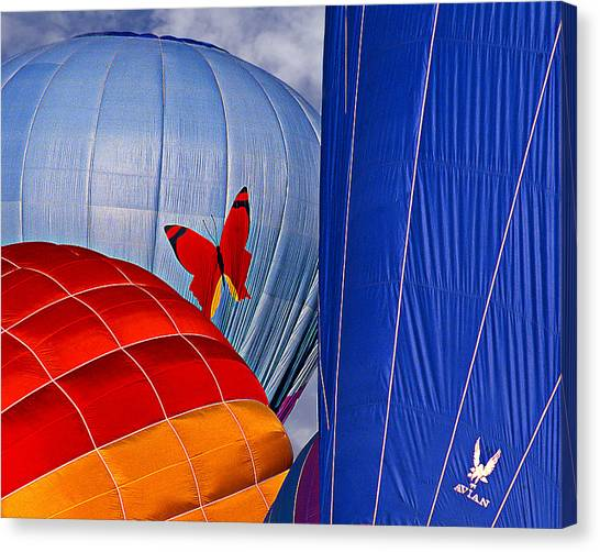 Butterfly Canvas Print by Ken Evans