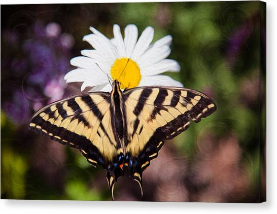 Canvas Print featuring the painting Butterfly Kisses by Omaste Witkowski
