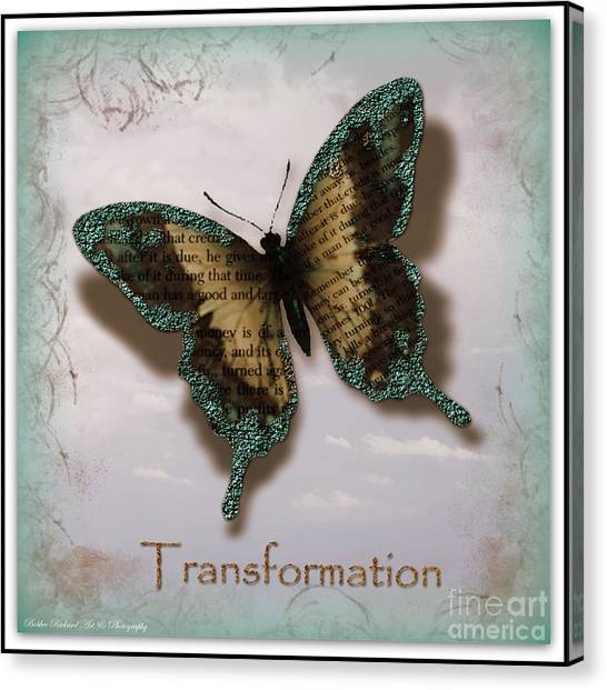 Butterfly Of Transformation Canvas Print