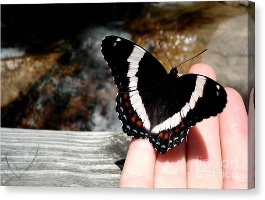Butterfly On Fingertips Canvas Print