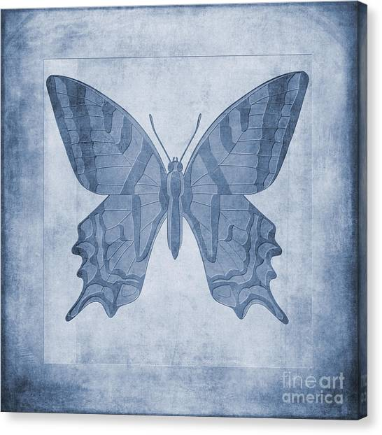 Lepidoptera Canvas Print - Butterfly Textures Cyanotype by John Edwards