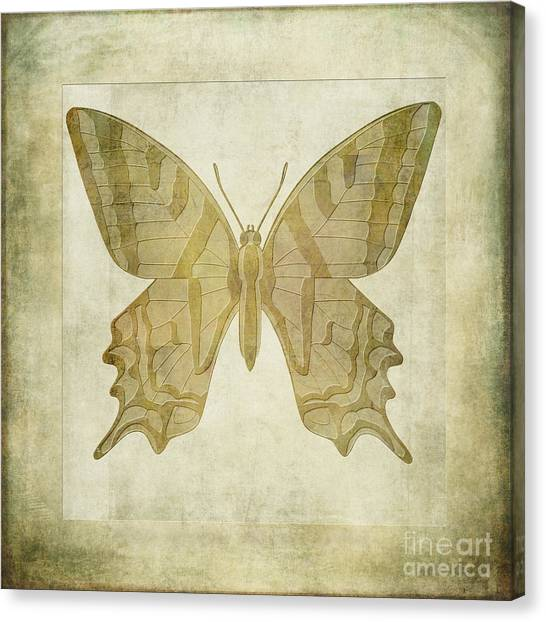 Lepidoptera Canvas Print - Butterfly Textures by John Edwards