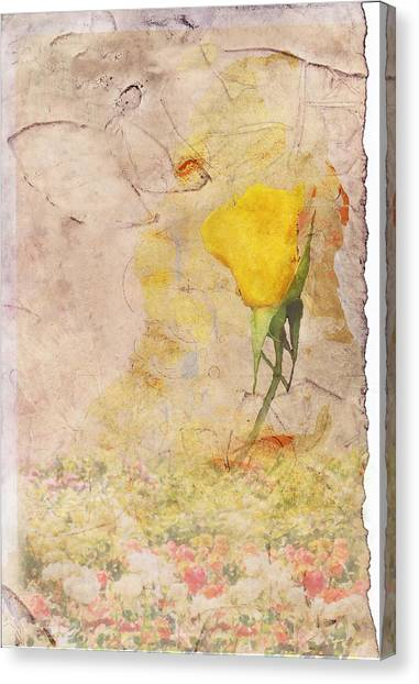 Butterfly Woman Canvas Print by Juli Cromer
