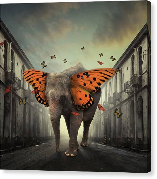Butterphant Canvas Print by Hardibudi