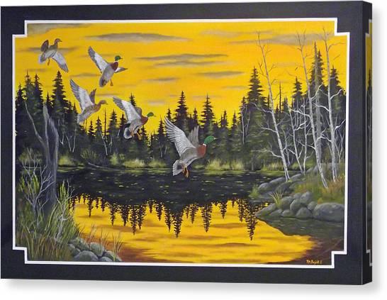 Auklets Canvas Print - Bwca  by Rudolph Bajak