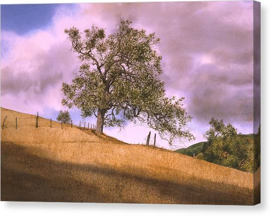 By The Big Oak Canvas Print