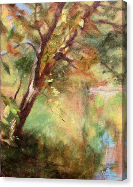 By The Greenway In Autumn- Along The Roanoke River Canvas Print
