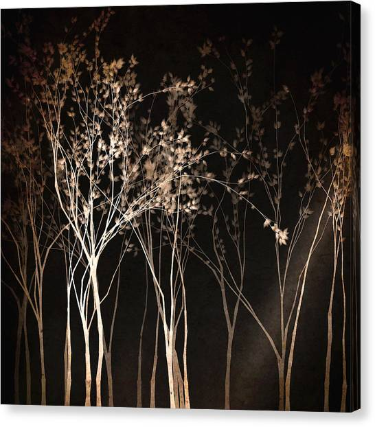 Canvas Print featuring the digital art By The Light Of The Moon by Susan Maxwell Schmidt