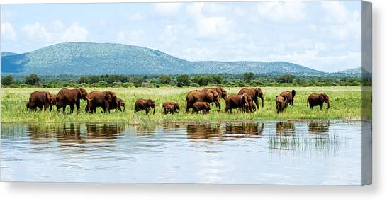 By The Water Panoramic  Canvas Print by Stephanie Frankle