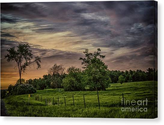 By The Way Canvas Print