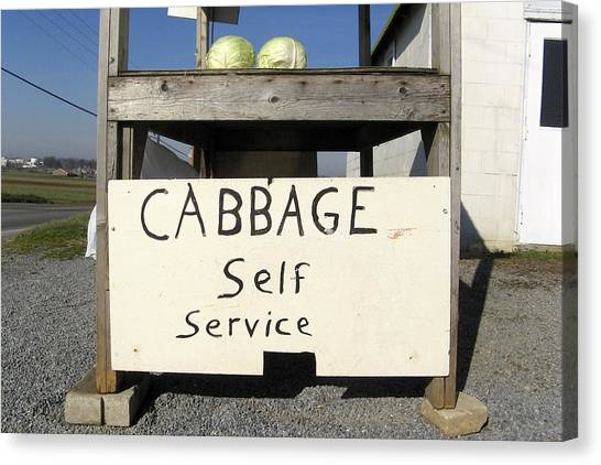 Cabbage Self Service Canvas Print