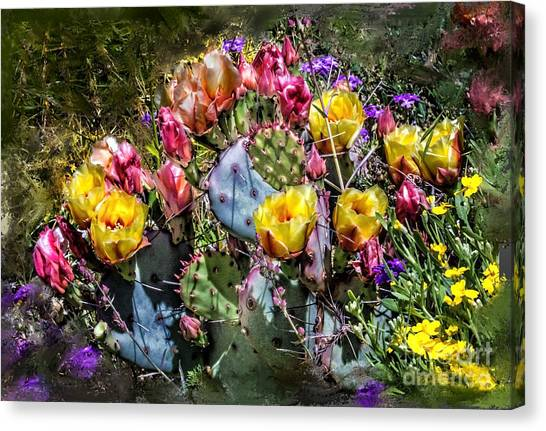 Cacti Flowers Painterly Canvas Print by Georgianne Giese