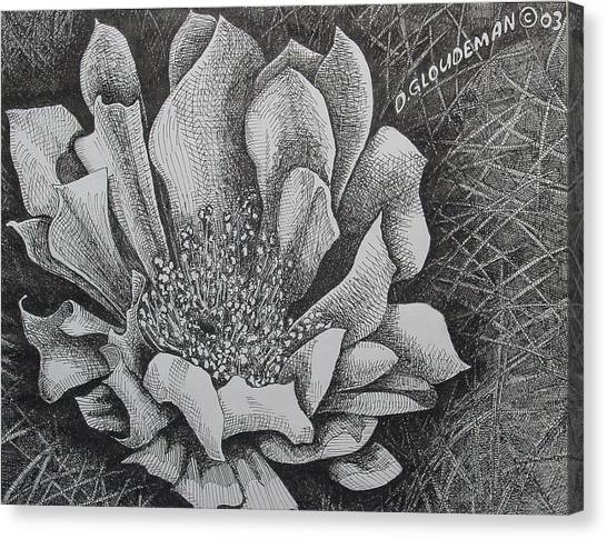 Cactus Flower Canvas Print by Denis Gloudeman