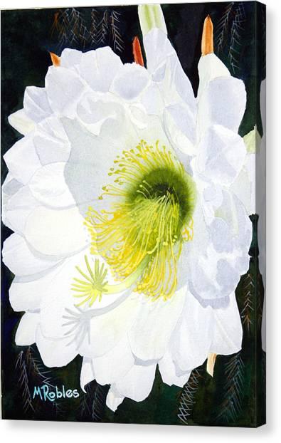 Cactus Flower II Canvas Print