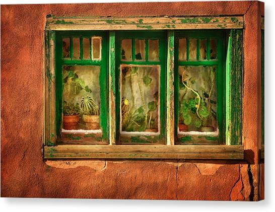 Hot Air Balloons Canvas Print - Cactus Window by Keith Berr