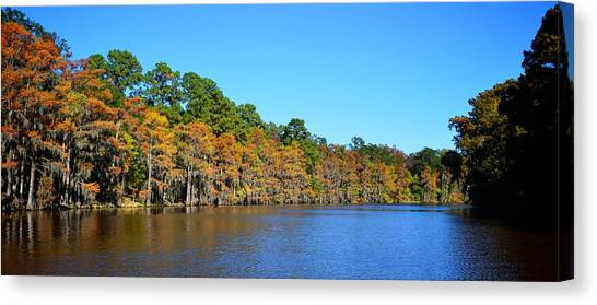 Caddo Lake 1 Canvas Print