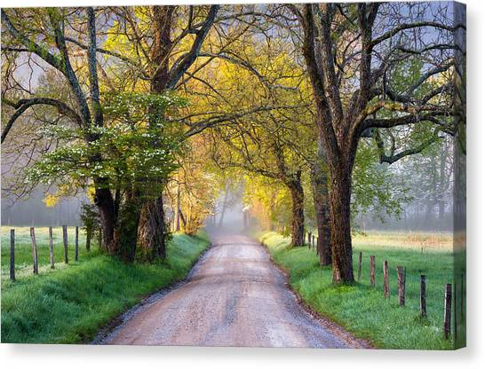 Dirt Road Canvas Print - Cades Cove Great Smoky Mountains National Park - Sparks Lane by Dave Allen