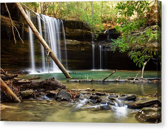 Cainey Creek Falls Canvas Print by Scott Moore
