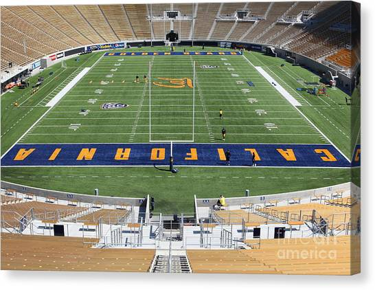 Uc Berkeley Canvas Print - Cal Golden Bears California Memorial Stadium Berkeley California 5d24684 by Wingsdomain Art and Photography