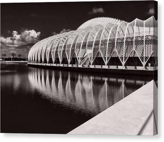University Of South Florida Canvas Print - Calatrava 7 by Gordon Engebretson