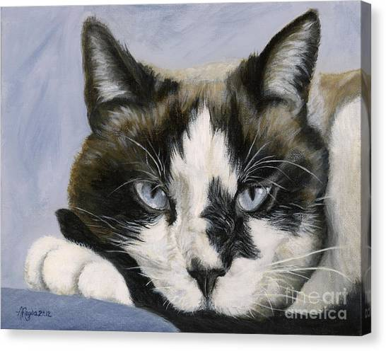 Calico Cat With Attitude Canvas Print