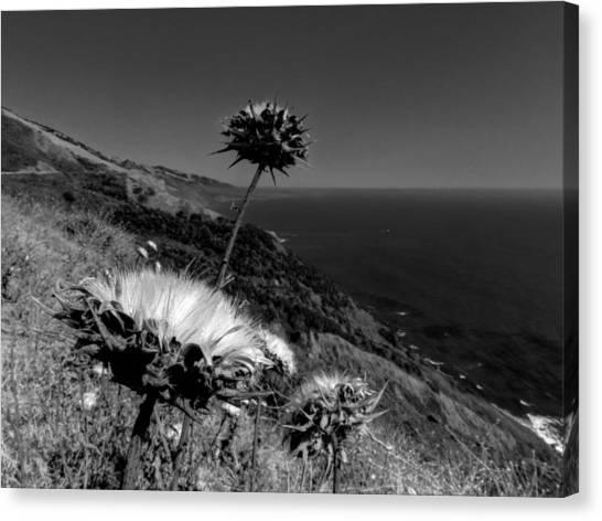 Big South Canvas Print - California - Big Sur 002 by Lance Vaughn