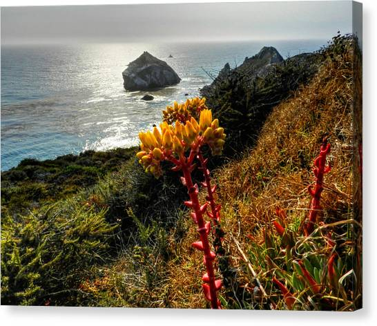Big South Canvas Print - California - Big Sur 006 by Lance Vaughn