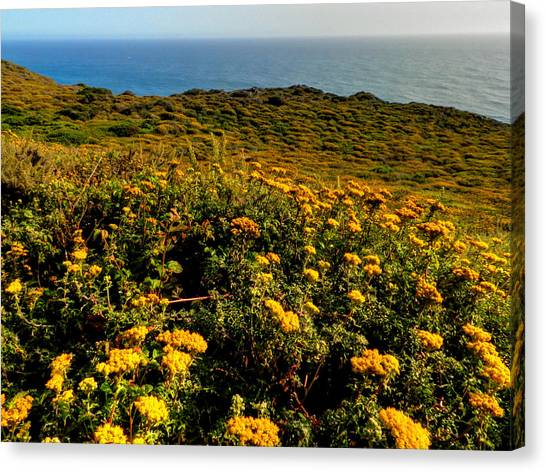 Big South Canvas Print - California - Big Sur 007 by Lance Vaughn