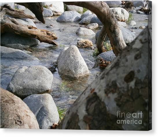 California Canyon 22 Canvas Print by Drew Shourd