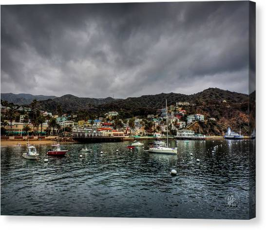 California - Catalina Island 003 Canvas Print by Lance Vaughn