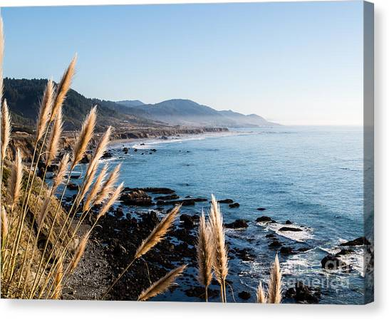 California Coast - 521 Canvas Print by Stephen Parker