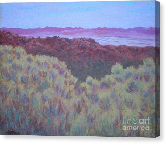 California Dry River Bed Canvas Print
