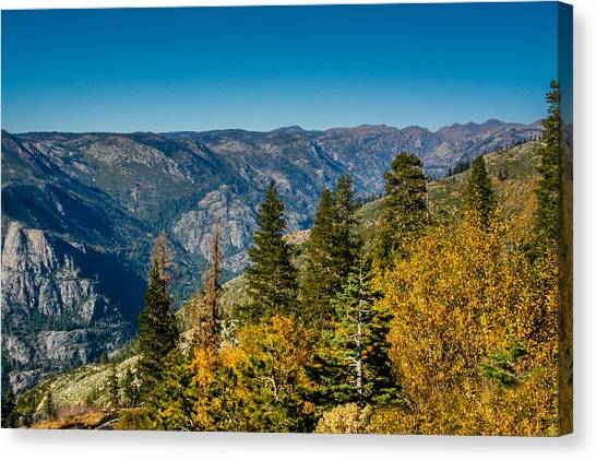 California Fall Canvas Print