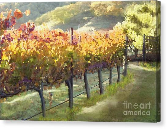 Corde Canvas Print - California Vineyard Series Morning In The Vineyard by Artist and Photographer Laura Wrede