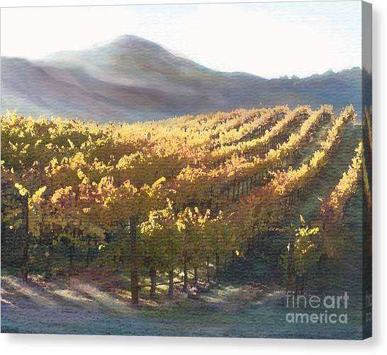 Corde Canvas Print - California Vineyard Series Vineyard In The Mist by Artist and Photographer Laura Wrede