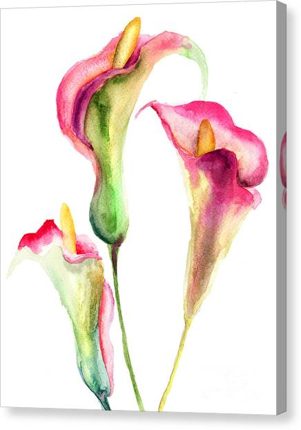 Abstract Watercolor Flowers Canvas Print