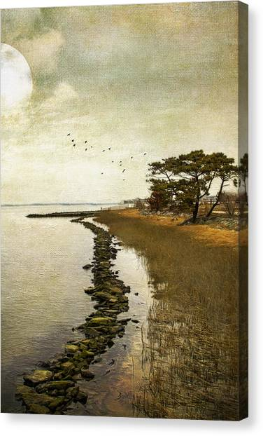 Calm At The Waters Edge Canvas Print