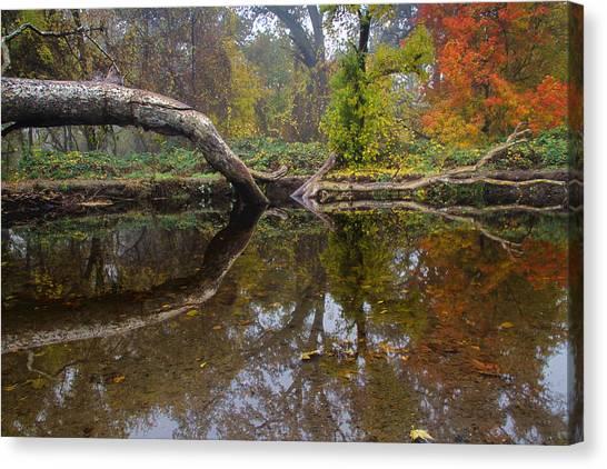 Calm On Big Chico Creek Canvas Print