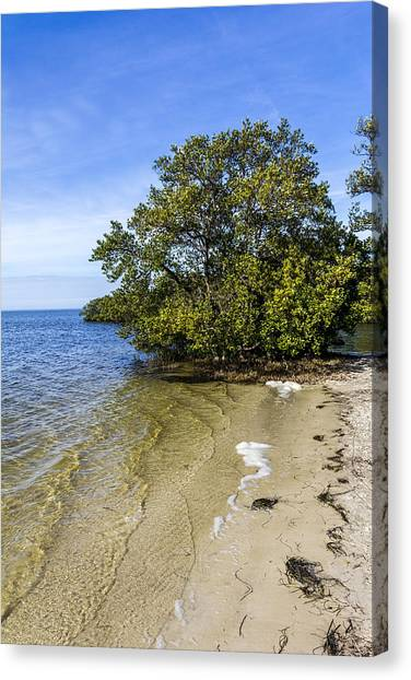 Low Tide Canvas Print - Calm Waters On The Gulf by Marvin Spates