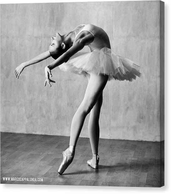 Ballerinas Canvas Print - Cambre  #dancephotography #ballet by Marco Cappalunga