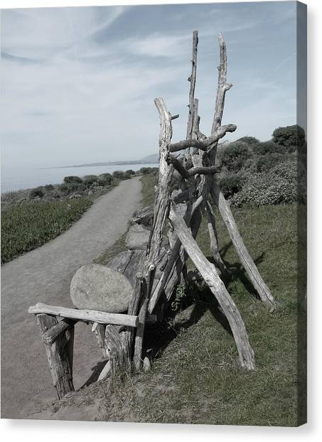 Cambria Driftwood Bench 2 Canvas Print