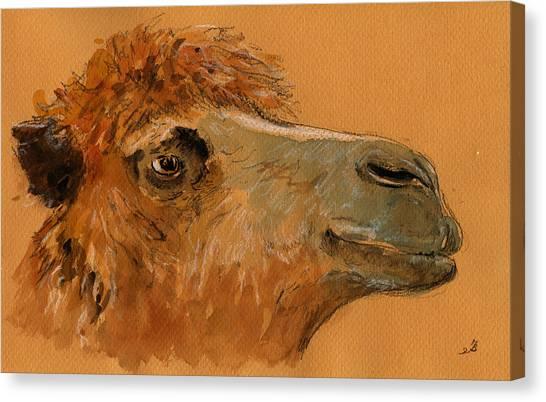 Camels Canvas Print - Camel Head Study by Juan  Bosco