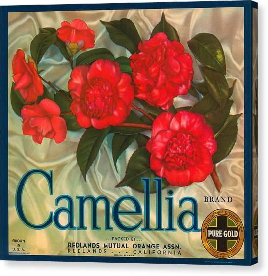 Camellia Canvas Print - Camellia Crate Label by Label Art