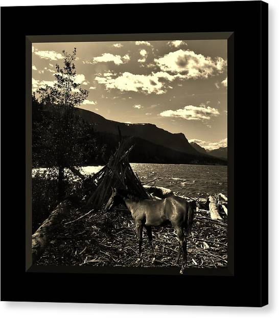 Camp Site Canvas Print