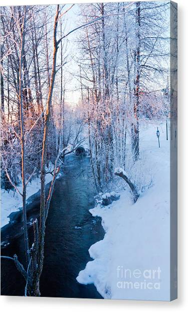 Campbell Creek In Hoarfrost Canvas Print