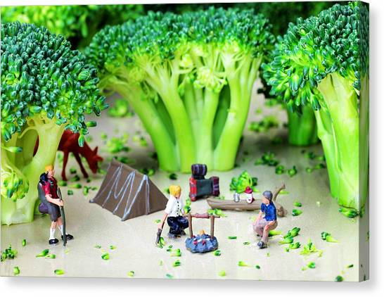 Broccoli Canvas Print - Camping Among Broccoli Jungles Miniature Art by Paul Ge