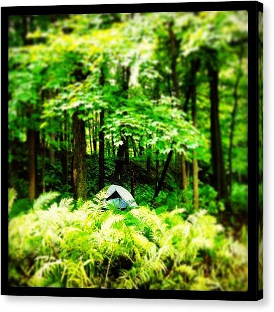 Backpacks Canvas Print - Camping By A River In Quebec Province by Emily Murray