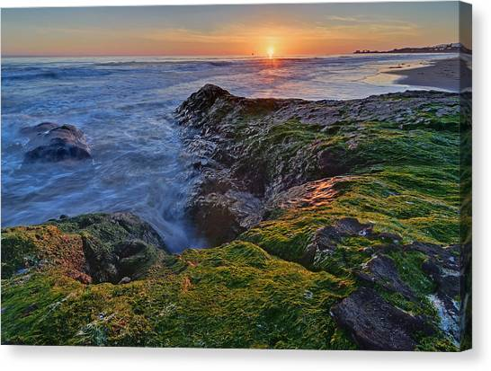 Ucsb Canvas Print - Campus Point Sunset by Brandon Yoshizawa