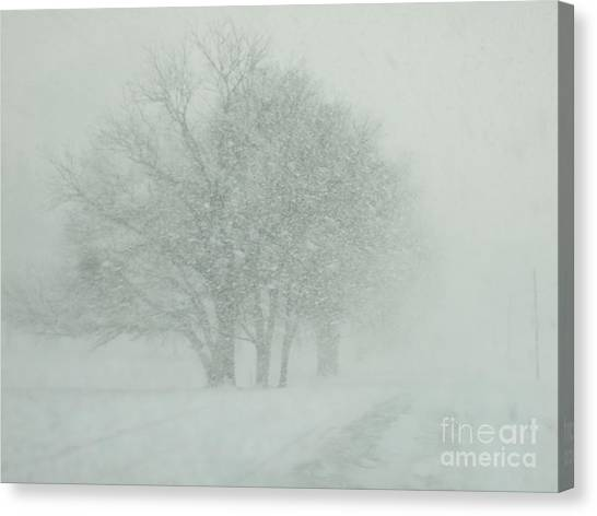 Can You See Canvas Print